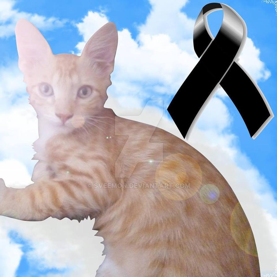 Goodbye my friend by SVeemon
