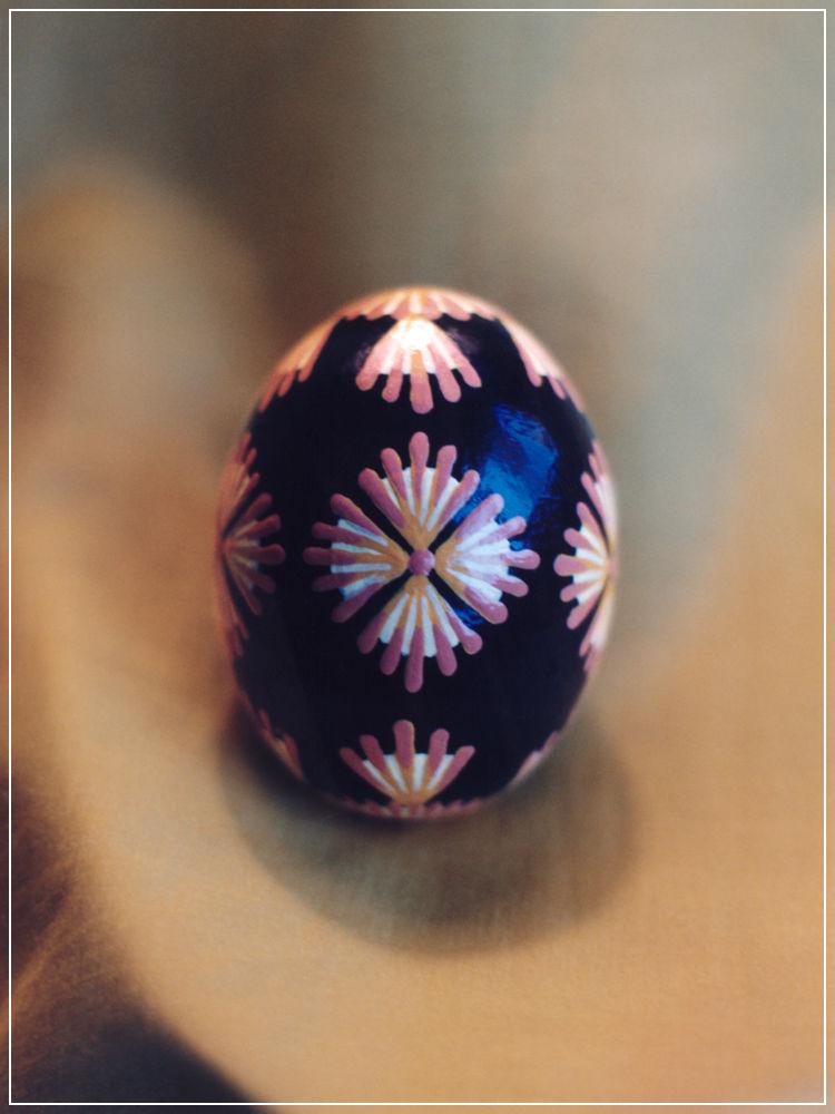 Handpainted Hen Egg - Paper Fans