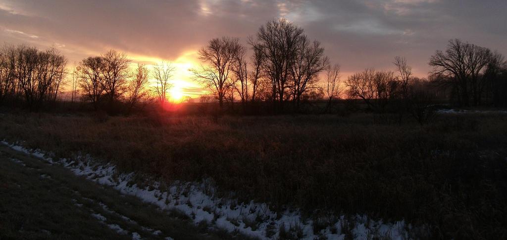 Cold Morning 3 by Crash-Box