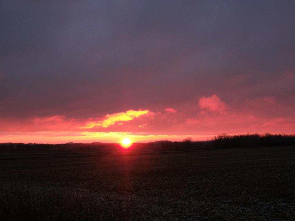 Dawn by Crash-Box
