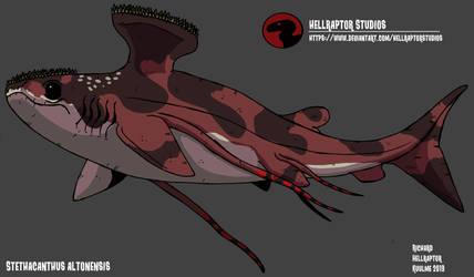 Stethacanthus altonensis by HellraptorStudios