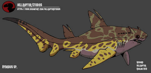 Hybodus sp. by HellraptorStudios