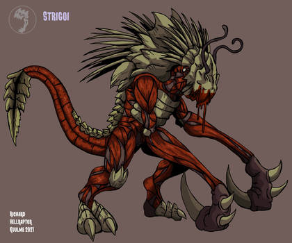 Raptormorphs: Strigoi