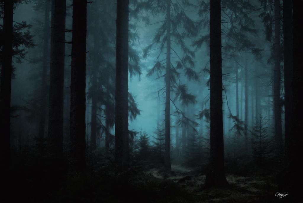 art dark car forest - photo #29