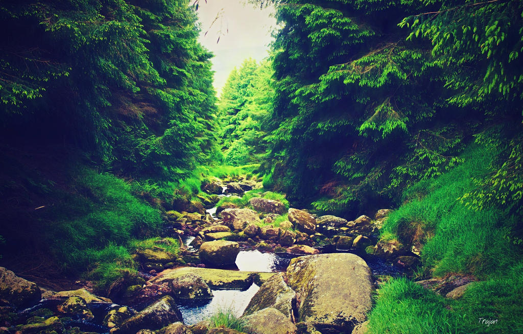 Rocky River by Trajan-pro