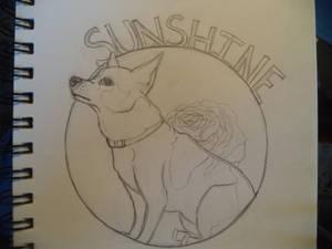 Sunshine Memorial Drawing