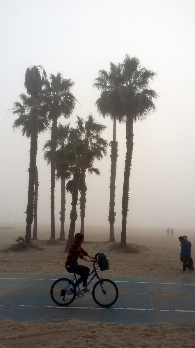 Foggy Santa Monica Beach by rbompro1