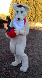 New Romacat Fursuit by iwantmyanime