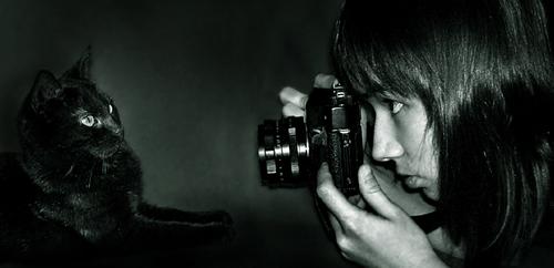 Aville's Profile Picture