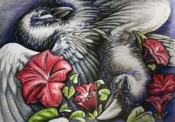 Ravens by kaseykmay