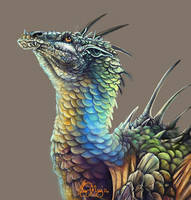 Dragon Portrait by kaseykmay