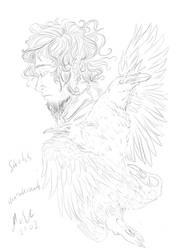 sketch raven and elve