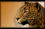 Wild Life: Leopard
