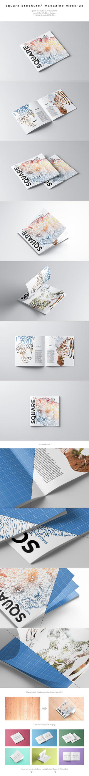 Square Brochure / Magazine Mock-Up by kotulsky