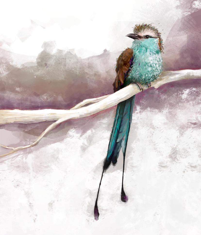 Bird by hmhankypanky