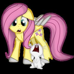 Fluttershy and Angel :3 by J3rykCZ