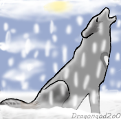 Wolf in the snow by Dragongod2o0
