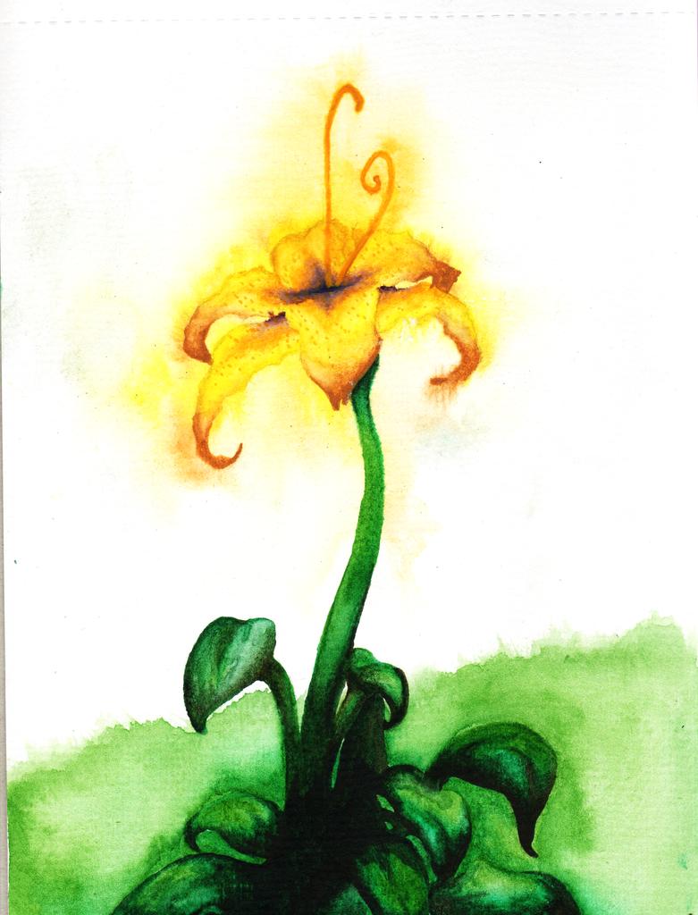 Flower gleam and glow by SorenPenn