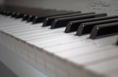 The Piano by caiotami