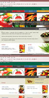 Web Template-f-Food process... by pulsetemple