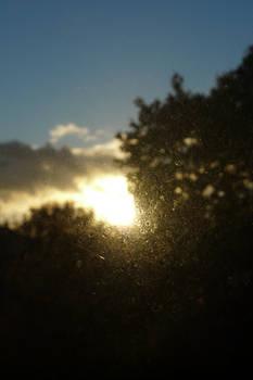 Autumn Sunset - Experiment 7