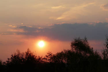 Evening-04-27_01