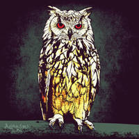 owl by Juliansyahjude