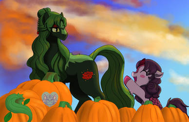 Off to the Pumpkin Patch