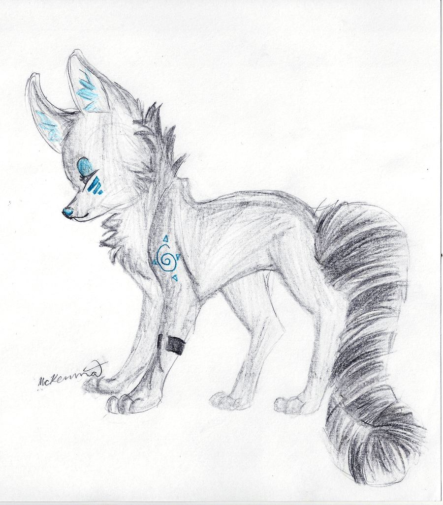 Wolf Drawing By Lisette Mage
