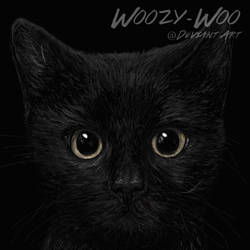 Black Cat by Woozy-Woo by Woozy-Woo
