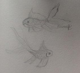 1 fishy, 2 fishy