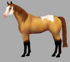Horse adopt OPEN
