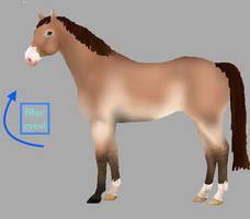 OPEN Horse adopt Cheap!