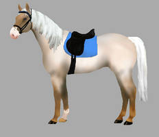 Horse Adopt with tack!! Closed