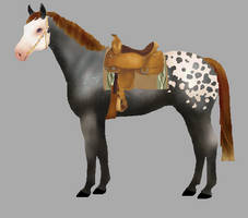 Horse and tack adopt OPEN