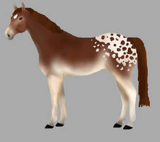 Only 5 points!! Horse adopt! OPEN!!