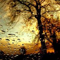 rainy autumn by a-go