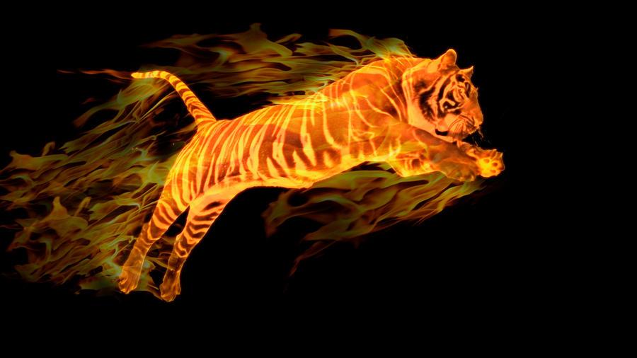 Fantasy Fire Tiger   Photo#20