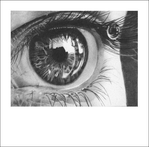 Teardrop by Suanin