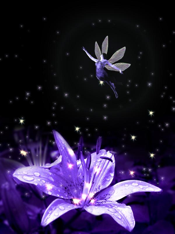 http://fc00.deviantart.net/fs10/i/2006/108/0/a/fairy_by_psycho_firby.jpg
