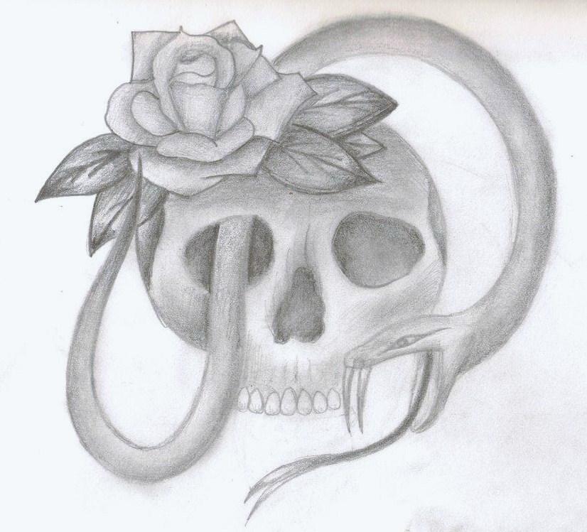 Skull snake rose drawing by xxxslipknot771xxx on deviantart skull snake rose drawing by xxxslipknot771xxx thecheapjerseys Choice Image