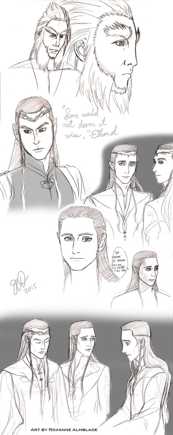 Beorn, Elrond, Elladan and Elrohir by RoxyRoo