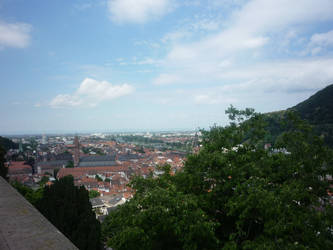 A View From Heidelberg Castle
