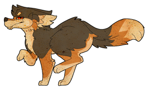 coyote by 1tsM4gic