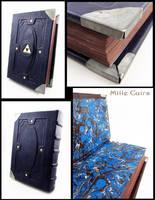 Blue Hyrulean book by MilleCuirs