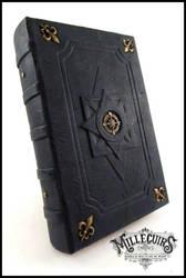 Navigator's blue logbook by MilleCuirs