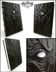 The blind eye book by MilleCuirs