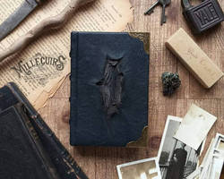 Tom Riddle's diary - small size version by MilleCuirs