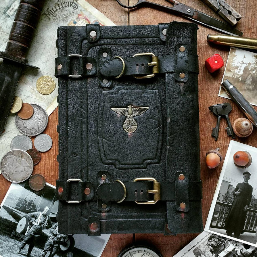 The lost aviator's journal by MilleCuirs