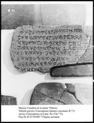 ICSU Archives - Oximolo tablet